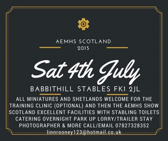 AEMHS Scotland at Babbithill Stables 04072015