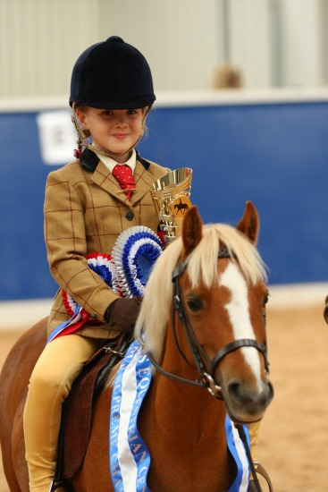 Hilltops Equestrian Centre - Rosettes and Sash Showing Show - 240916